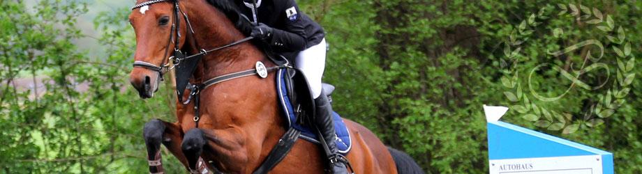 Förderung von Reiter und Reiterinnen
